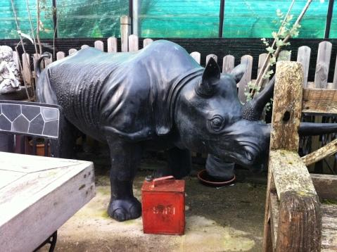 Pyro Rhino